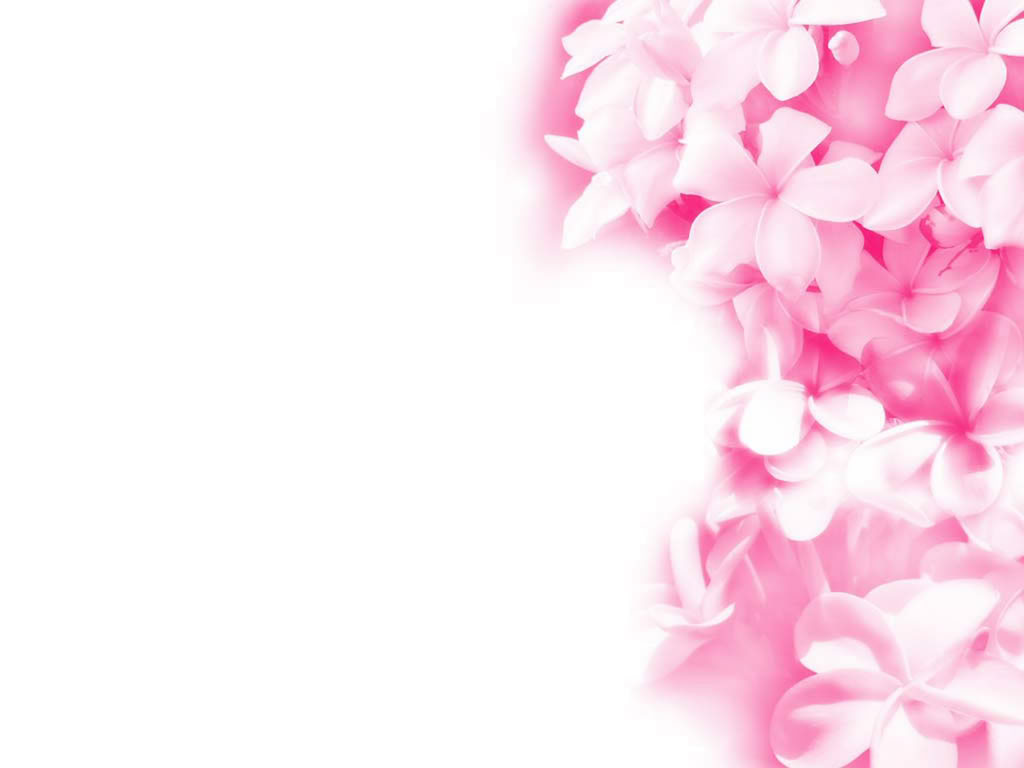 Beautiful Pink Wallpaper