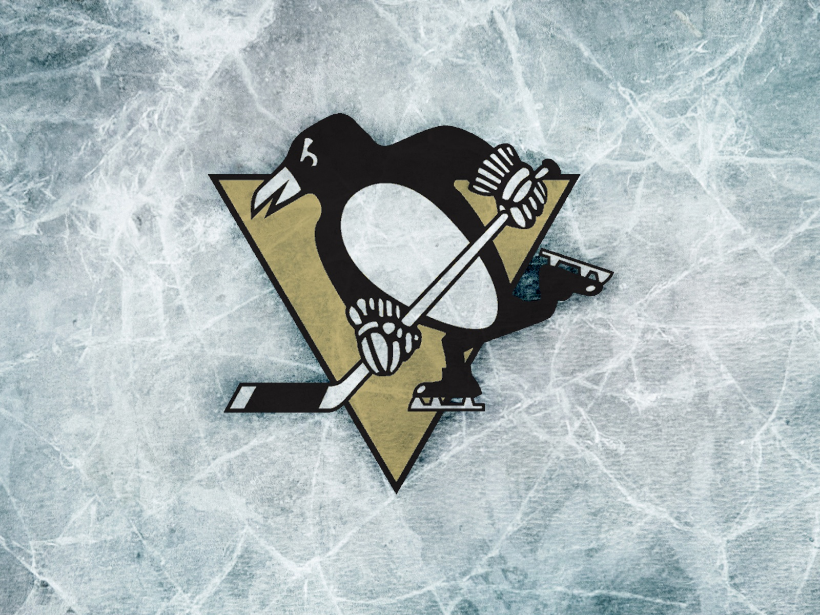 If you are looking for Pittsburgh Penguins images, today is your lucky day!! :D