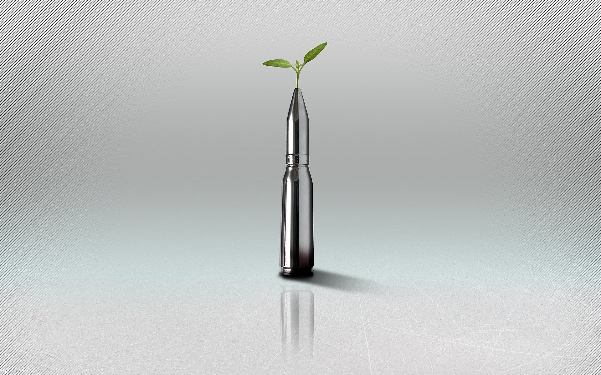 Plant on Bullet