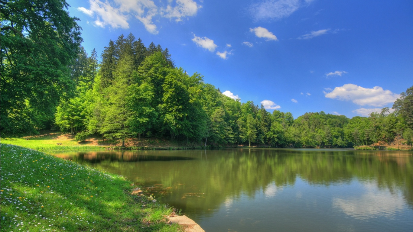 Pond Background
