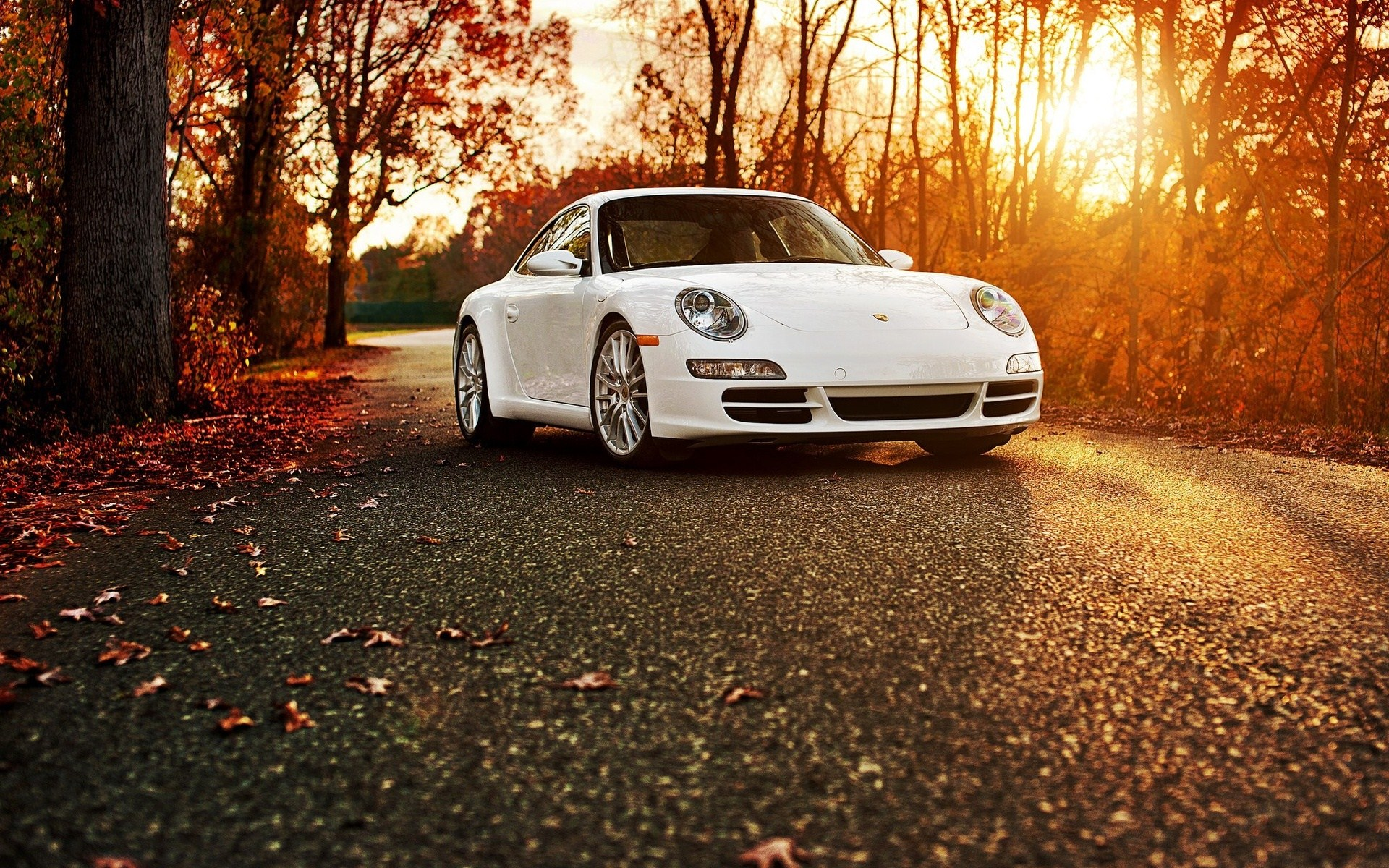 Porsche 911 Road Autumn