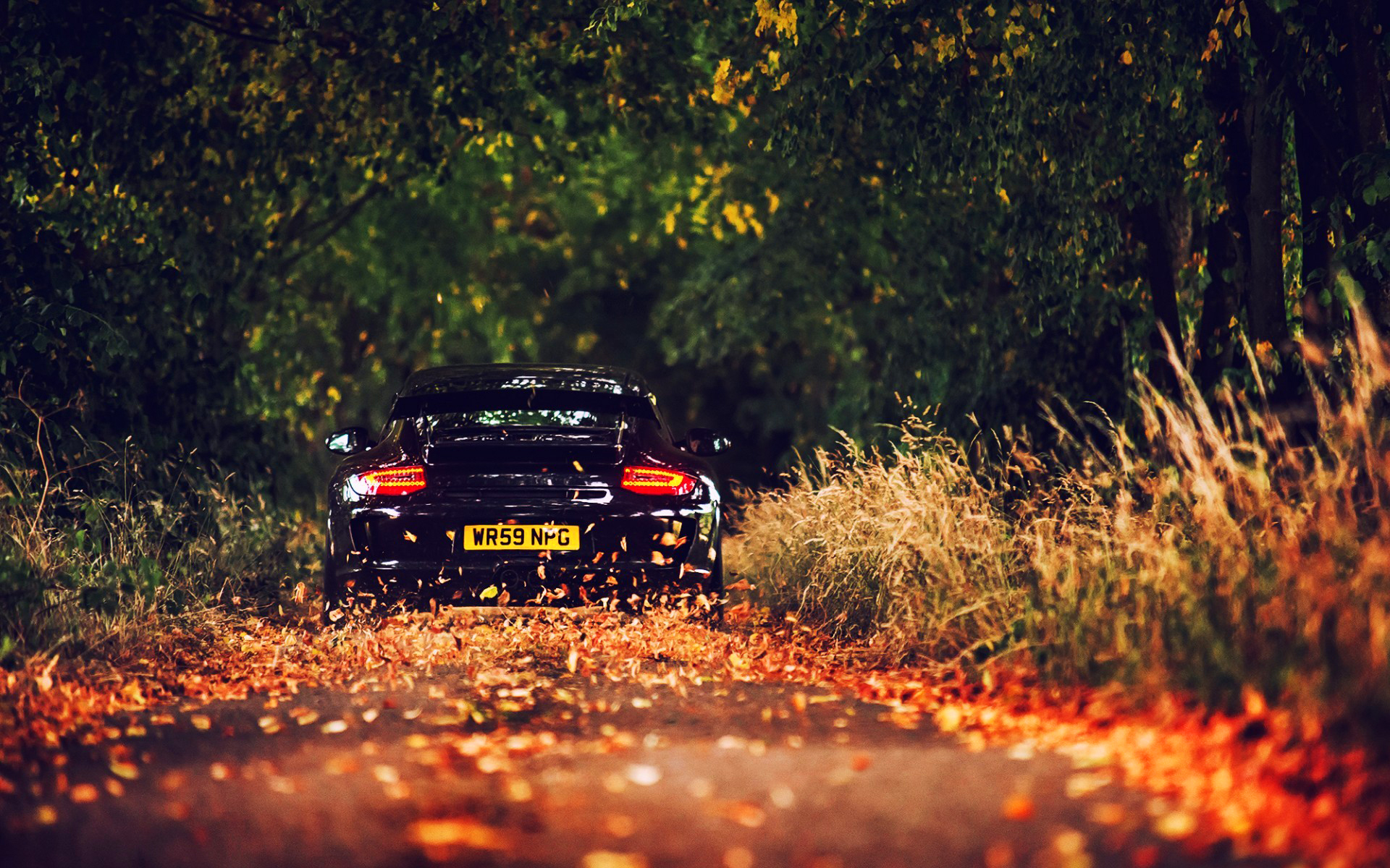 Porsche autumn road