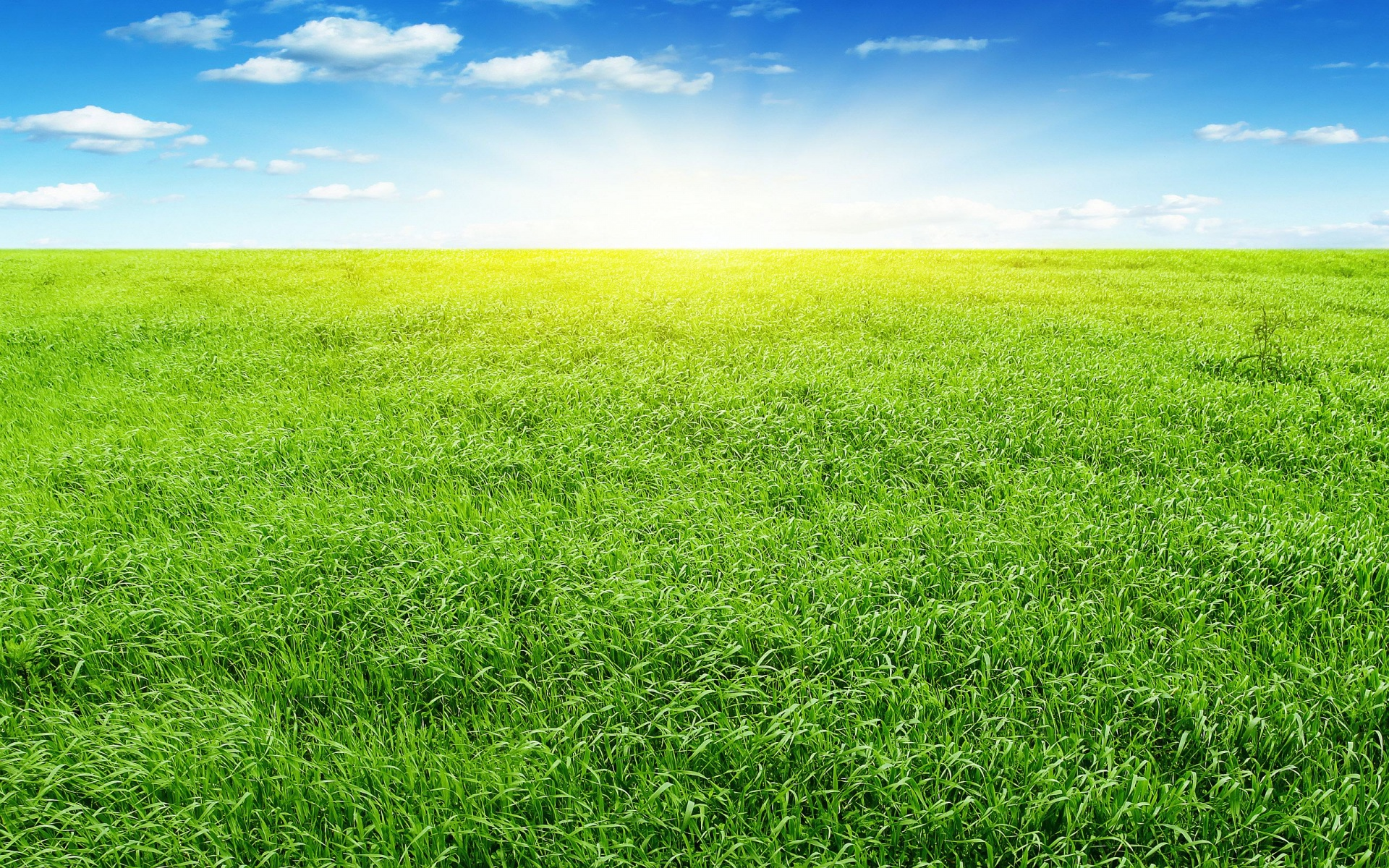 Prairie ...