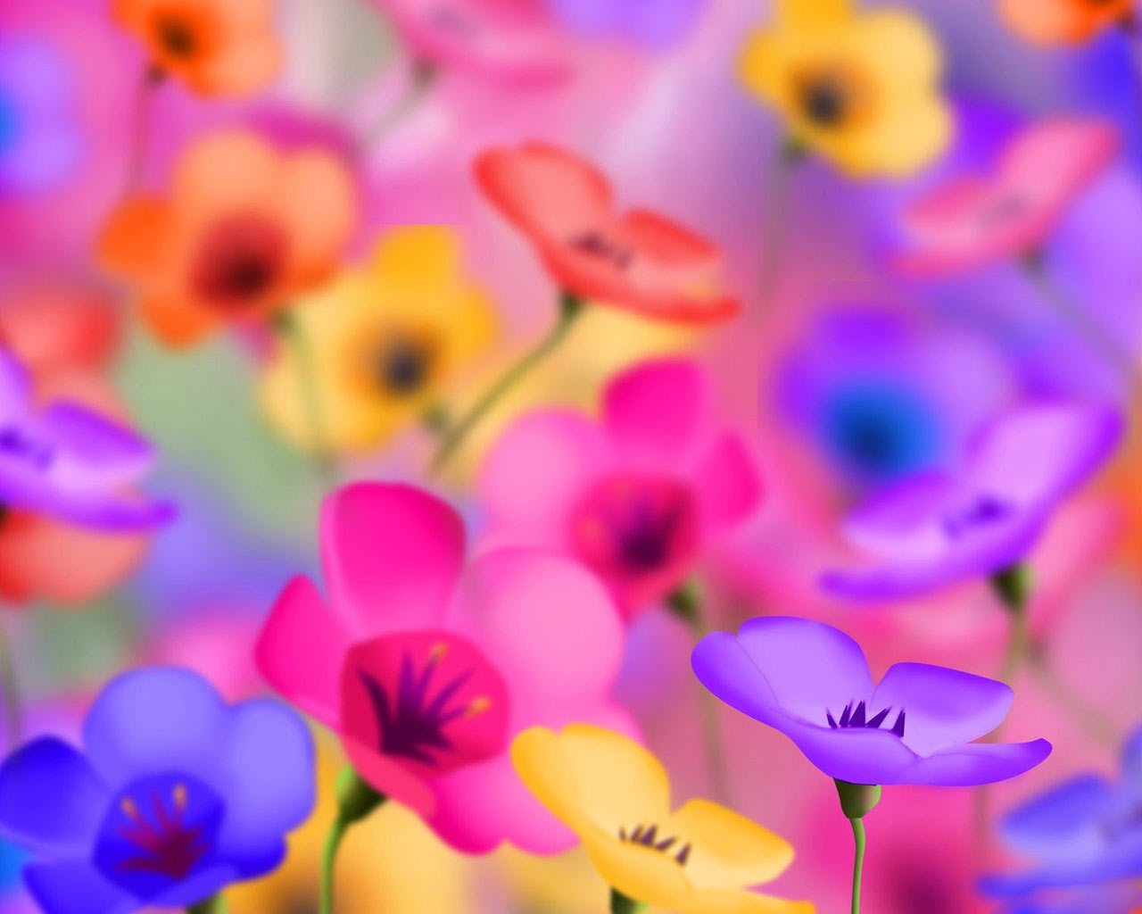 Flower Wallpapers - New Wallpaper