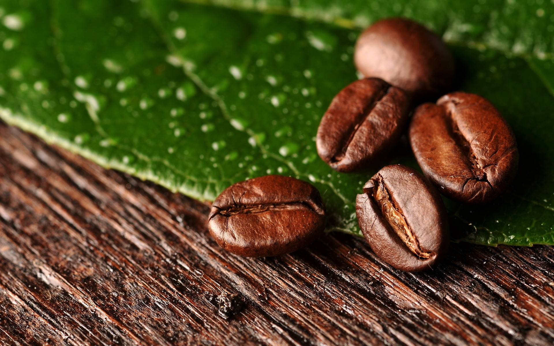 Pretty Coffee Beans Wallpaper