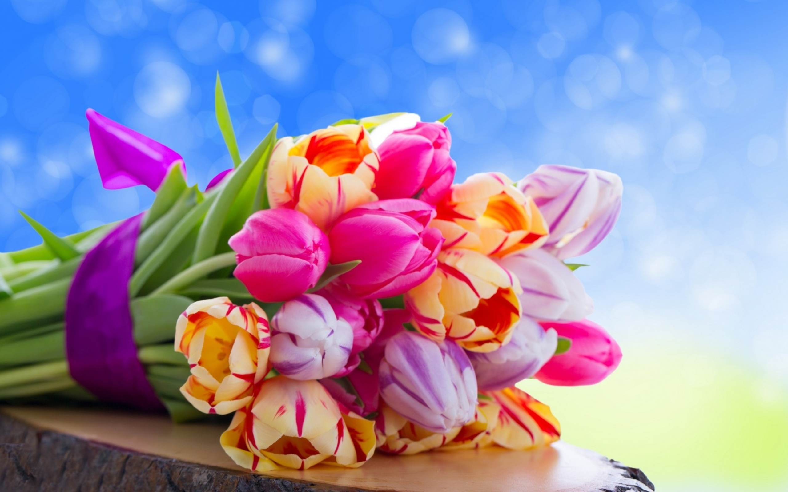 Cute Colorful Flowers