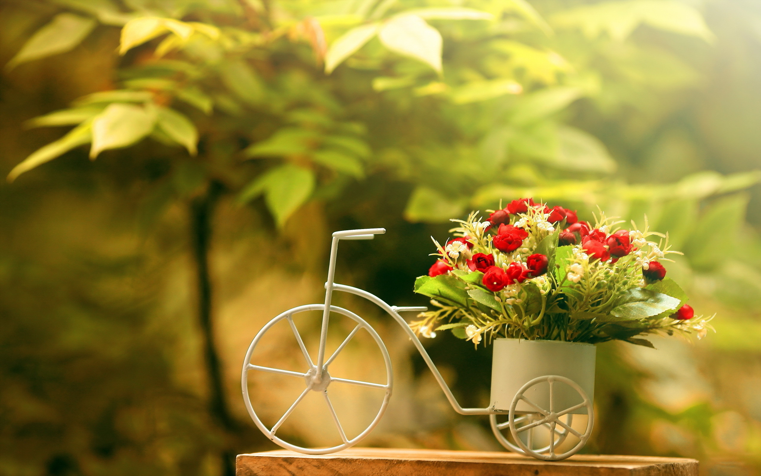 Pretty Flower Pot Wallpaper 42737 1680x1050 px