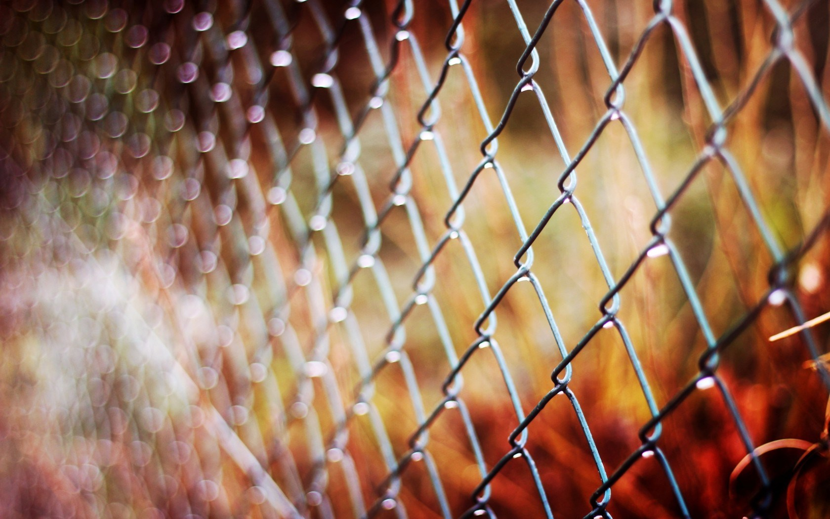 Pretty Metal Fence Wallpaper