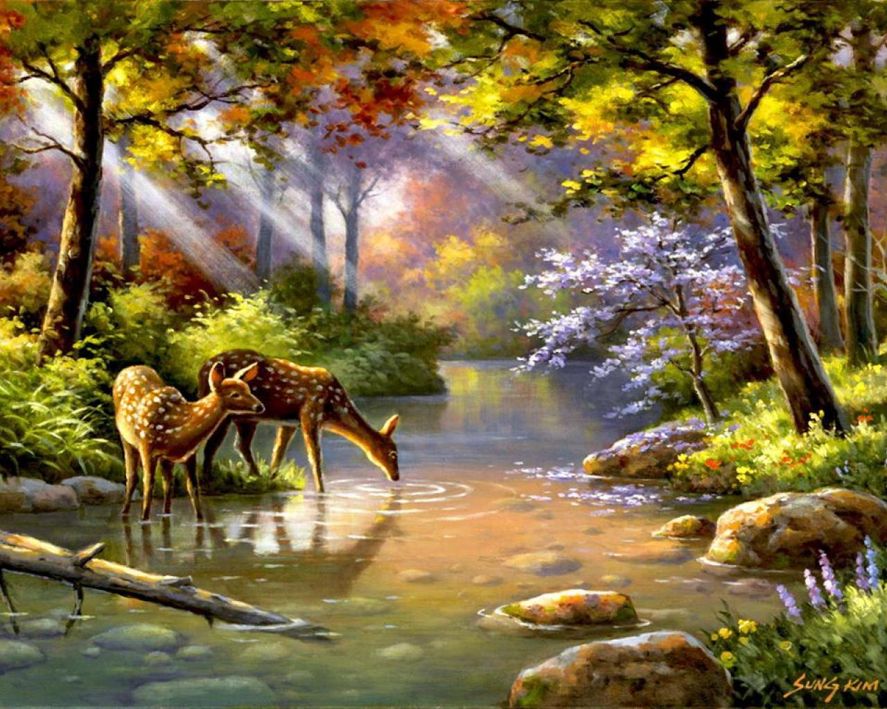 Wallpaper Tags: stones nice deer flowers water roe pretty river quiet creek sunbeam stream nature serenity sun calmness light lovely rays beautiful trees ...