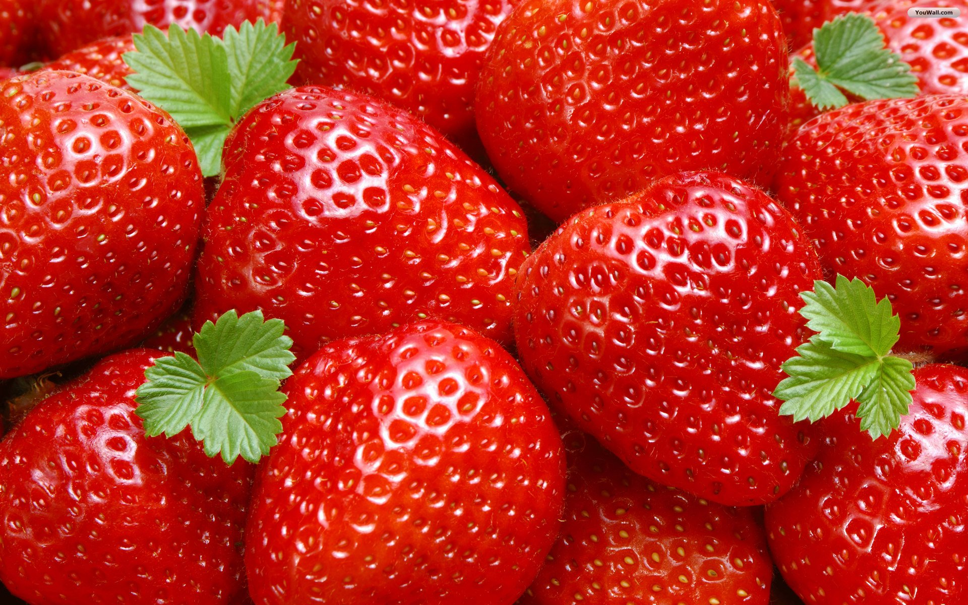 Pretty Strawberries Wallpaper
