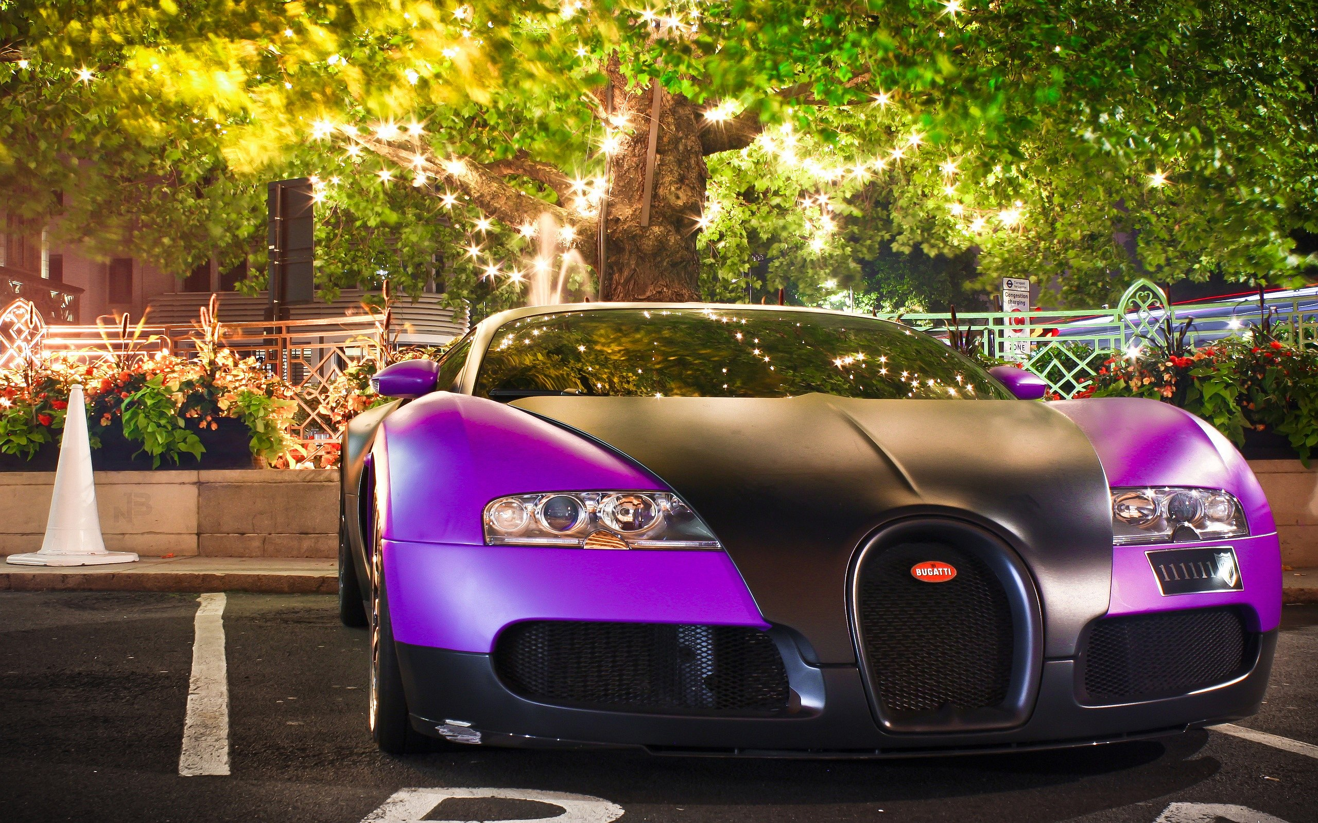 Purple Black Bugatti