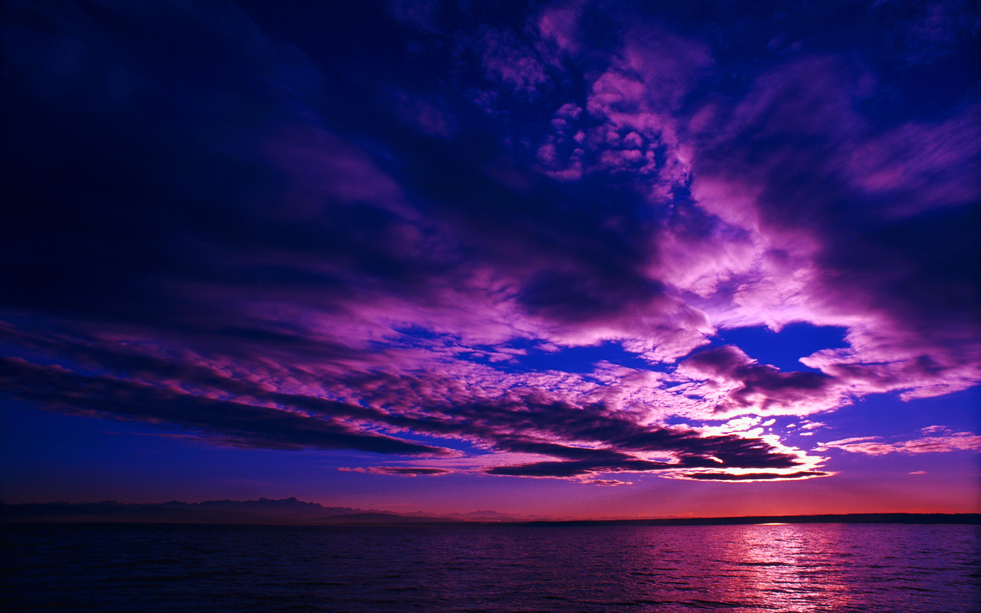 Purple Dusk wallpaper