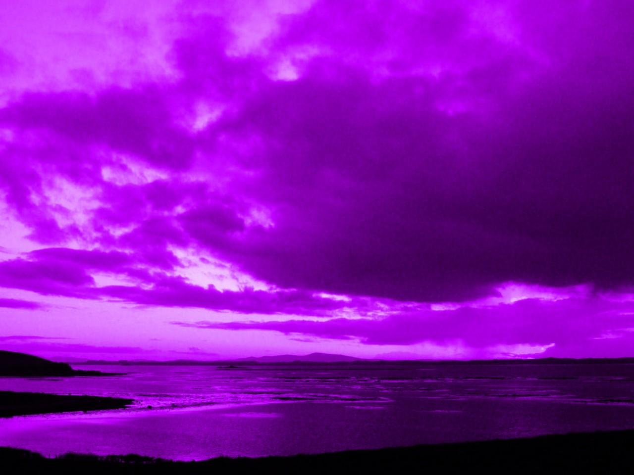 Purple Dusk 9045