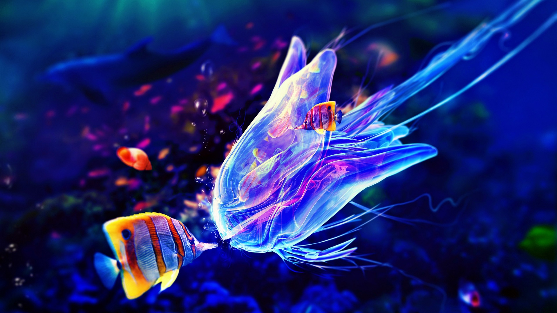 Purple Jellyfish Wallpaper
