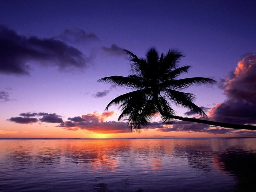 Purple sunset wallpapers hd