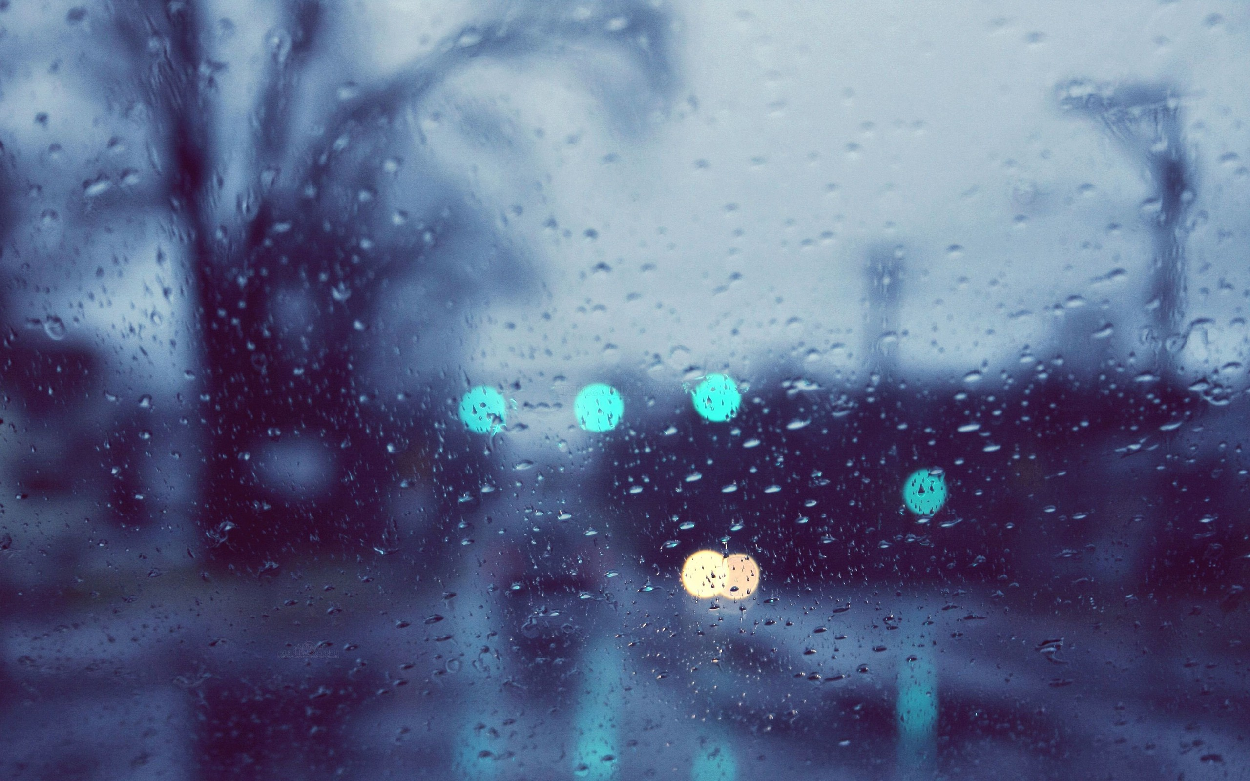Rain wallpaper | 2560x1600 | #39325