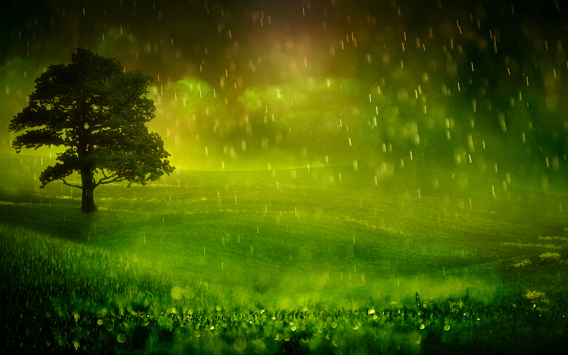 Nature Rain Wallpaper