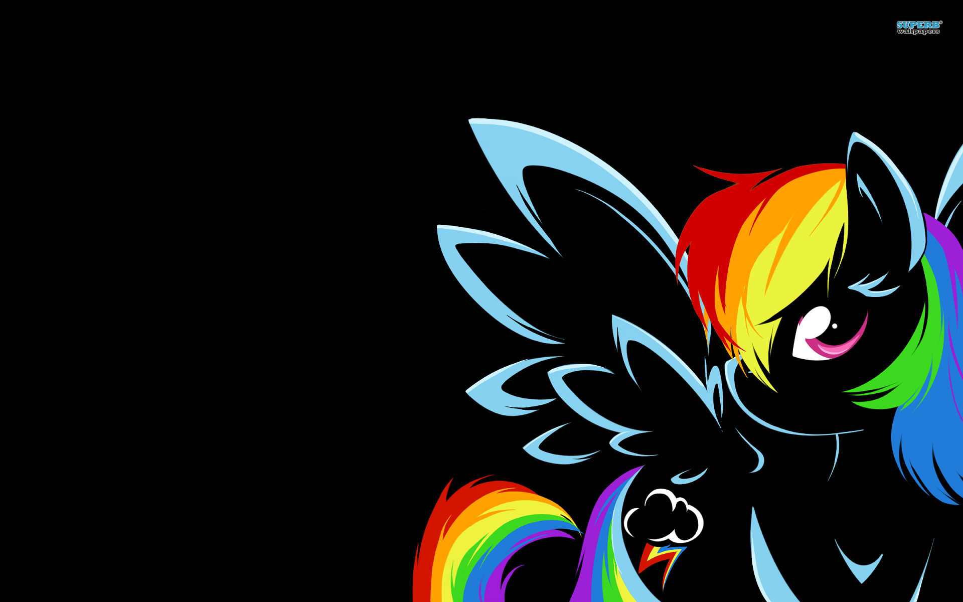 Rainbow Dash wallpaper 1920x1200 jpg