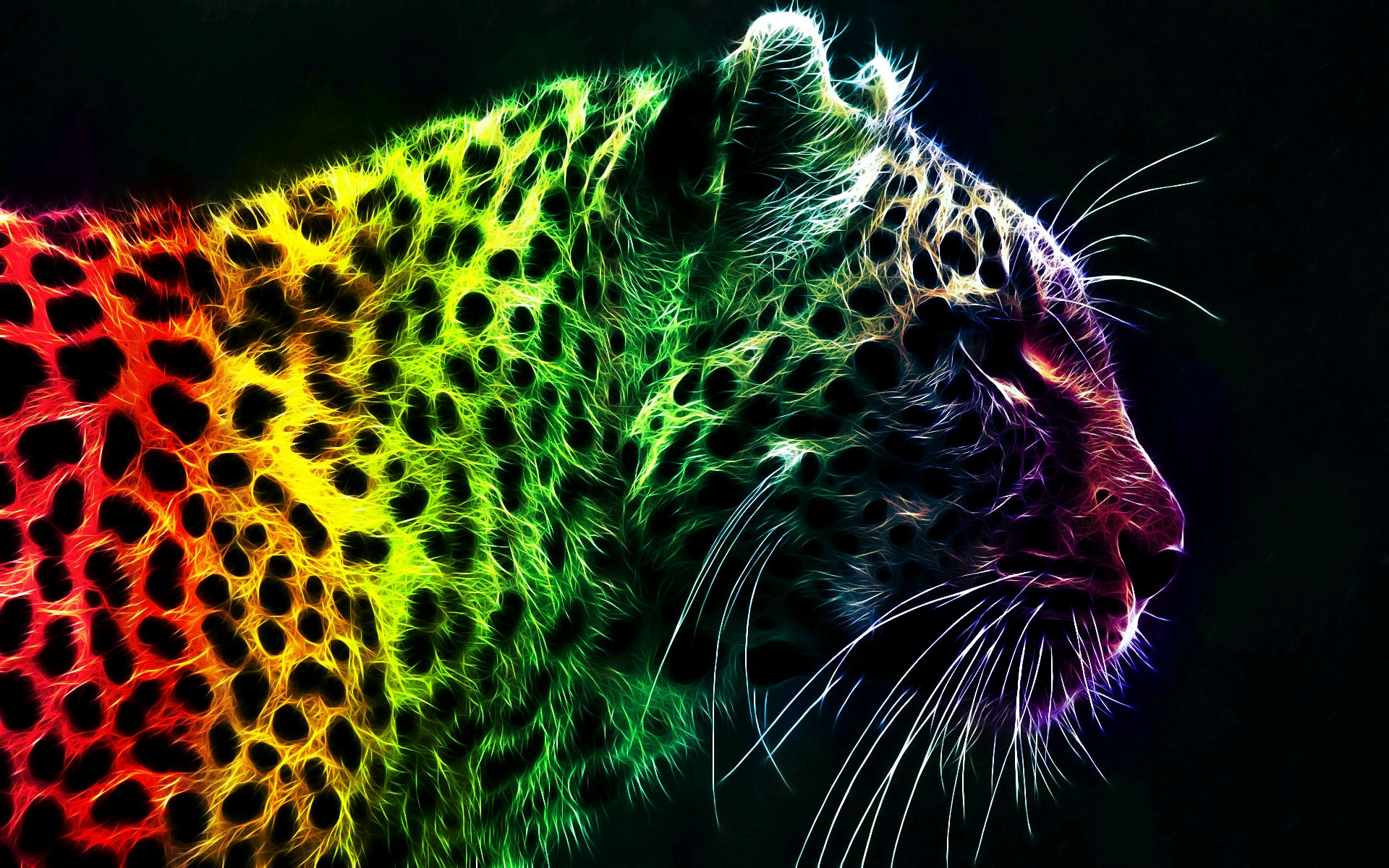 Rainbow Leopard Wallpapers Pictures Photos Images · «