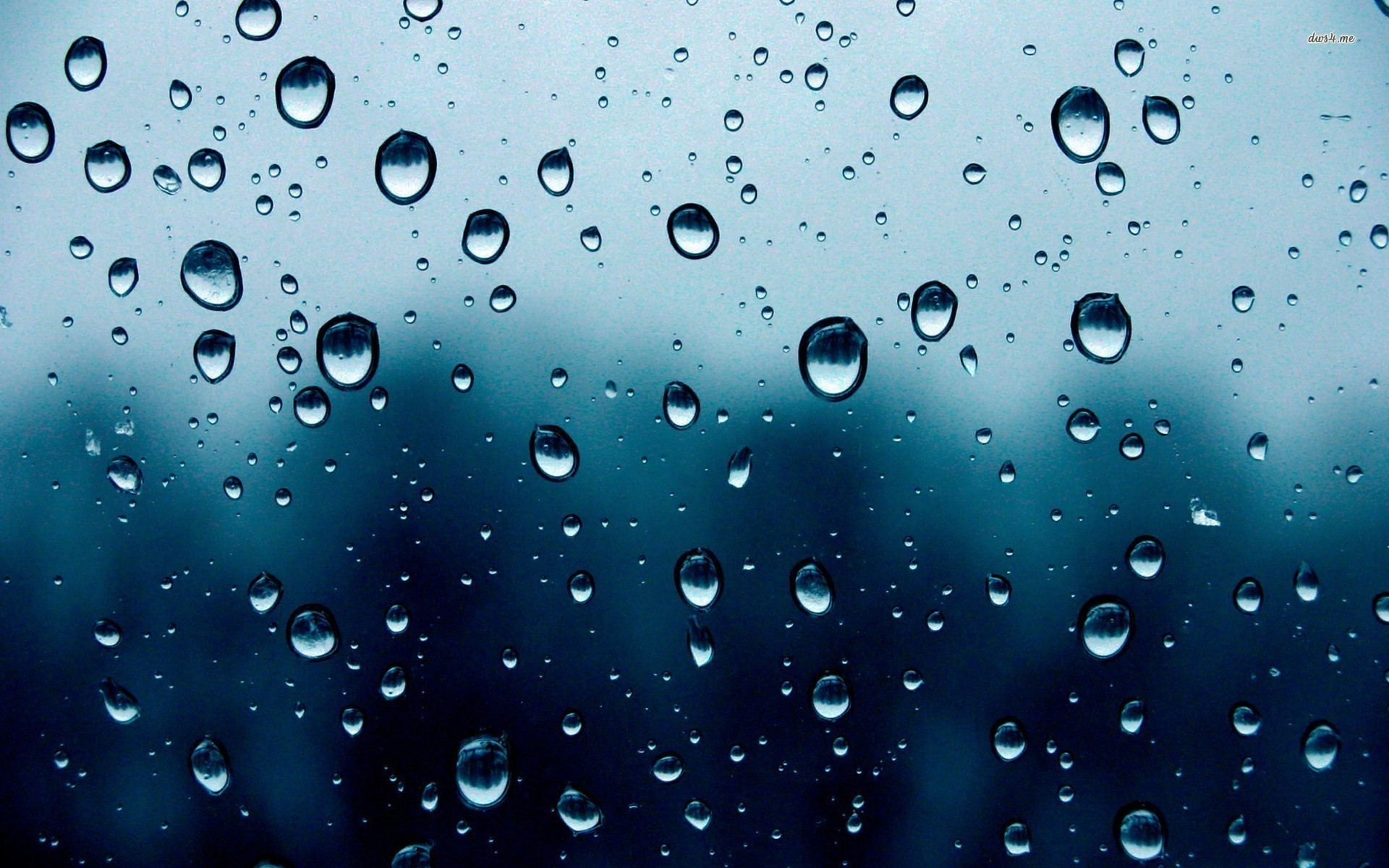 View And Download Rain Drops Desktop Wallpapers