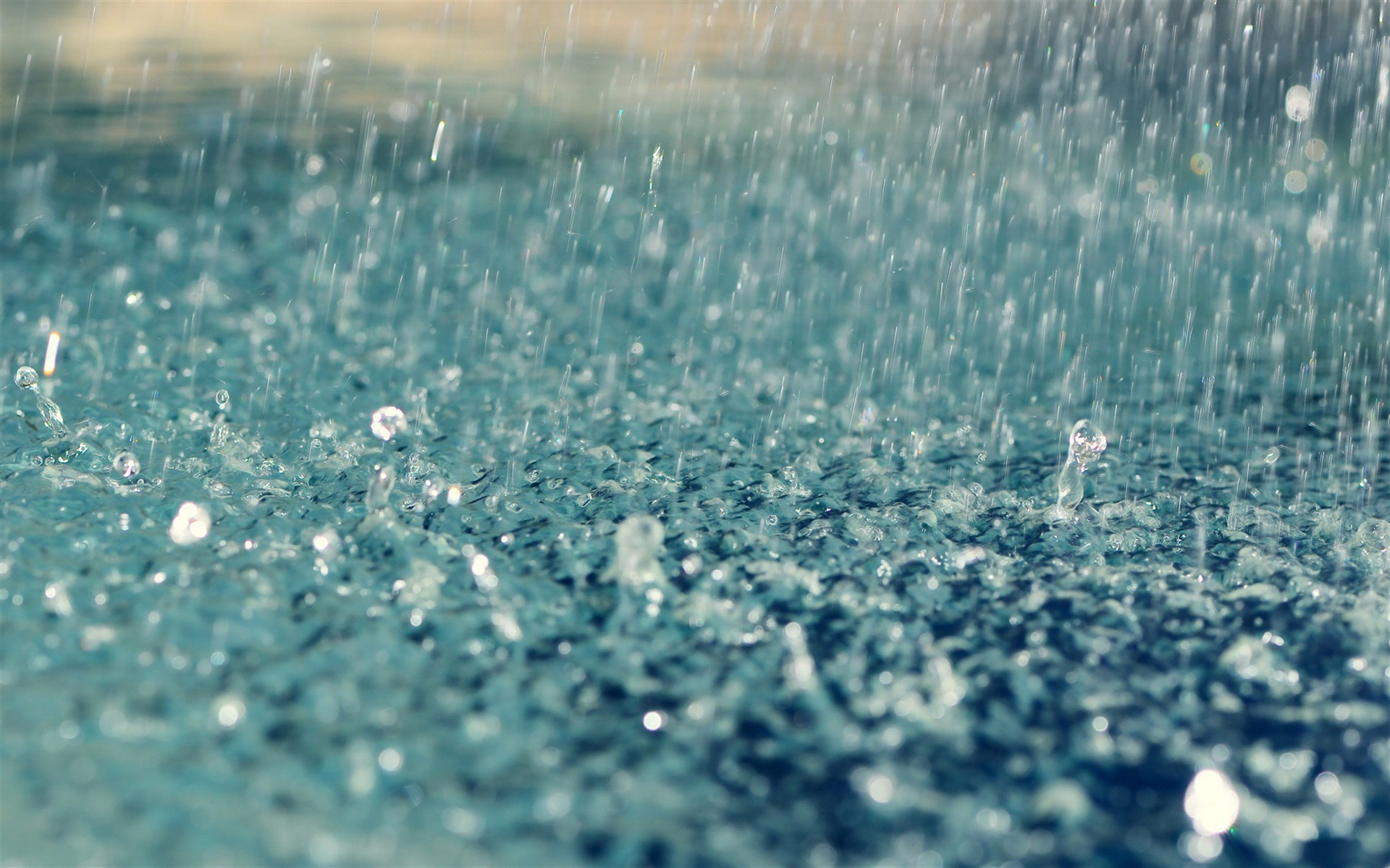 Most Downloaded Raindrops Wallpapers Full Hd Wallpaper Search