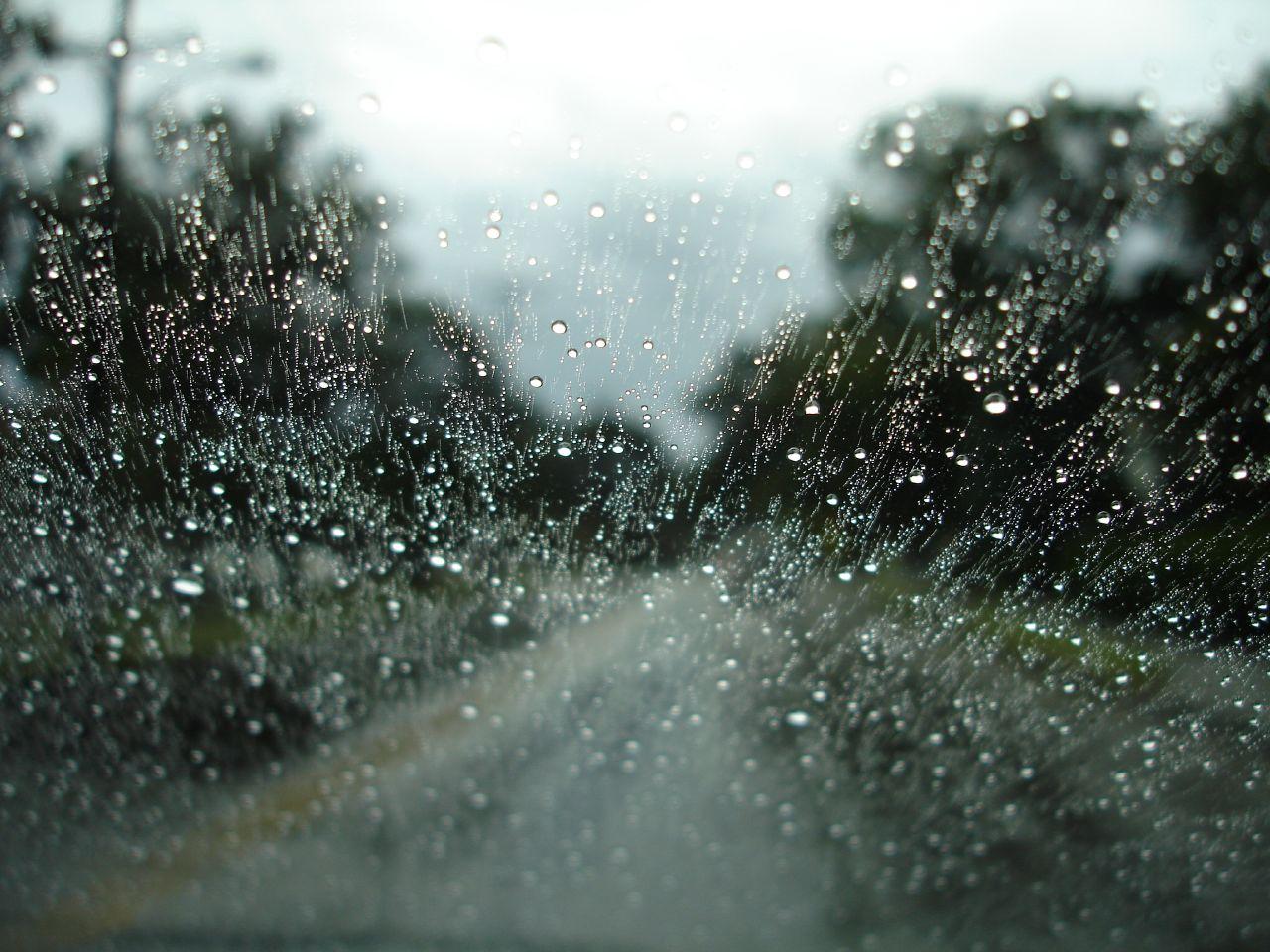 Rainy Wallpaper