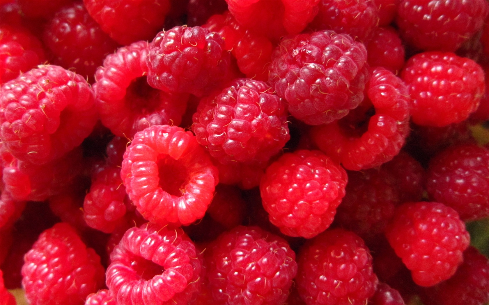 Red Raspberry berries, close-up photography wallpaper 1680x1050.