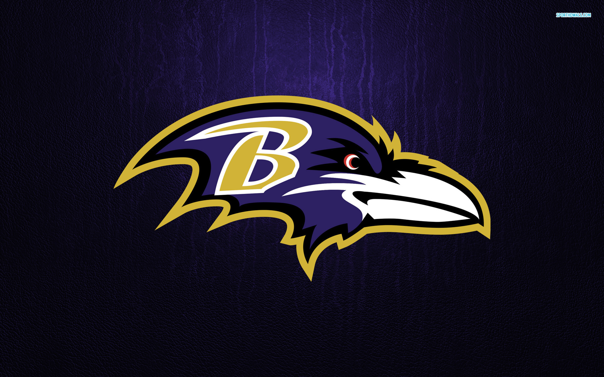 Baltimore Ravens images