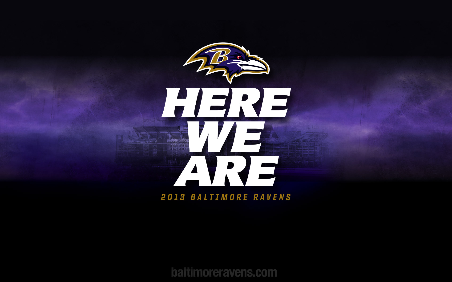 Baltimore Ravens Hd Background Wallpapers 1920x1200px