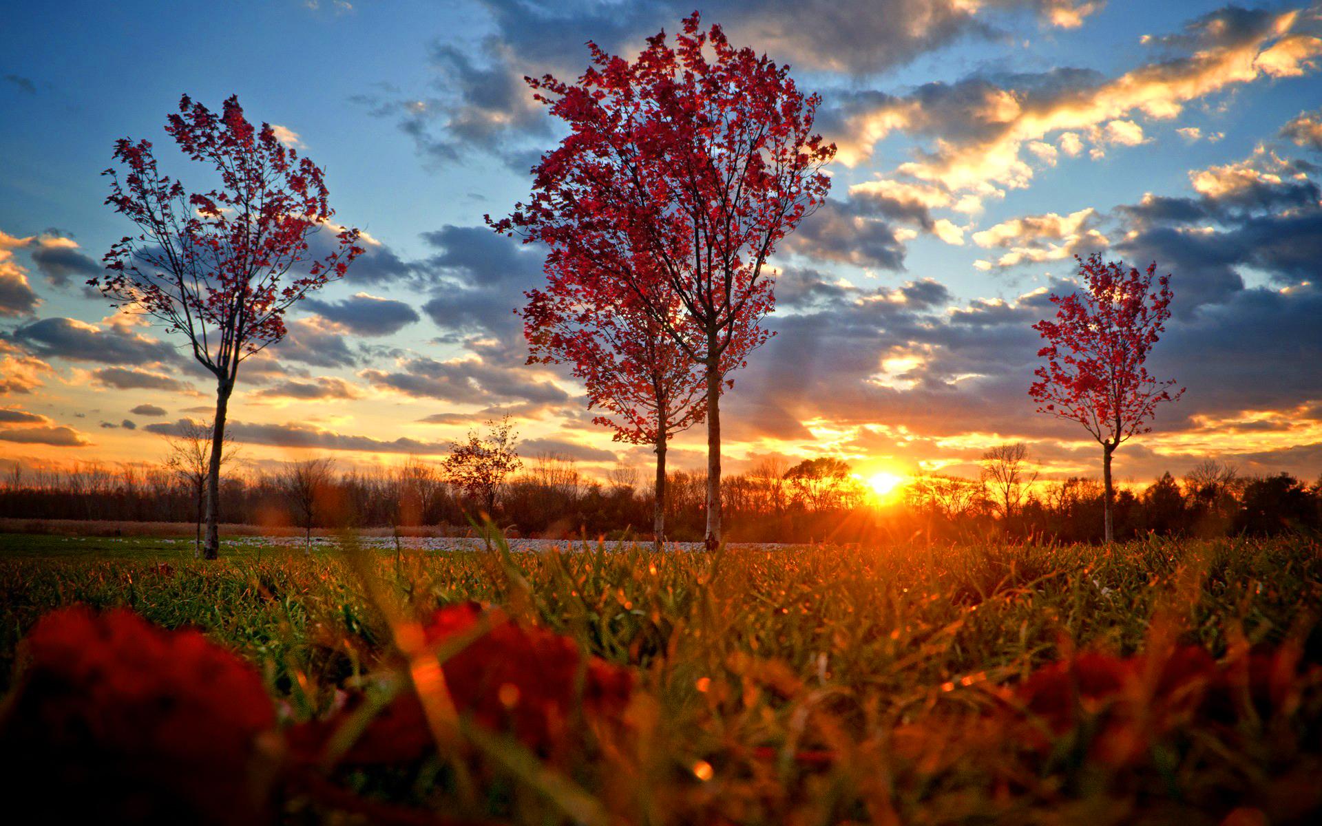 Red autumn sunset