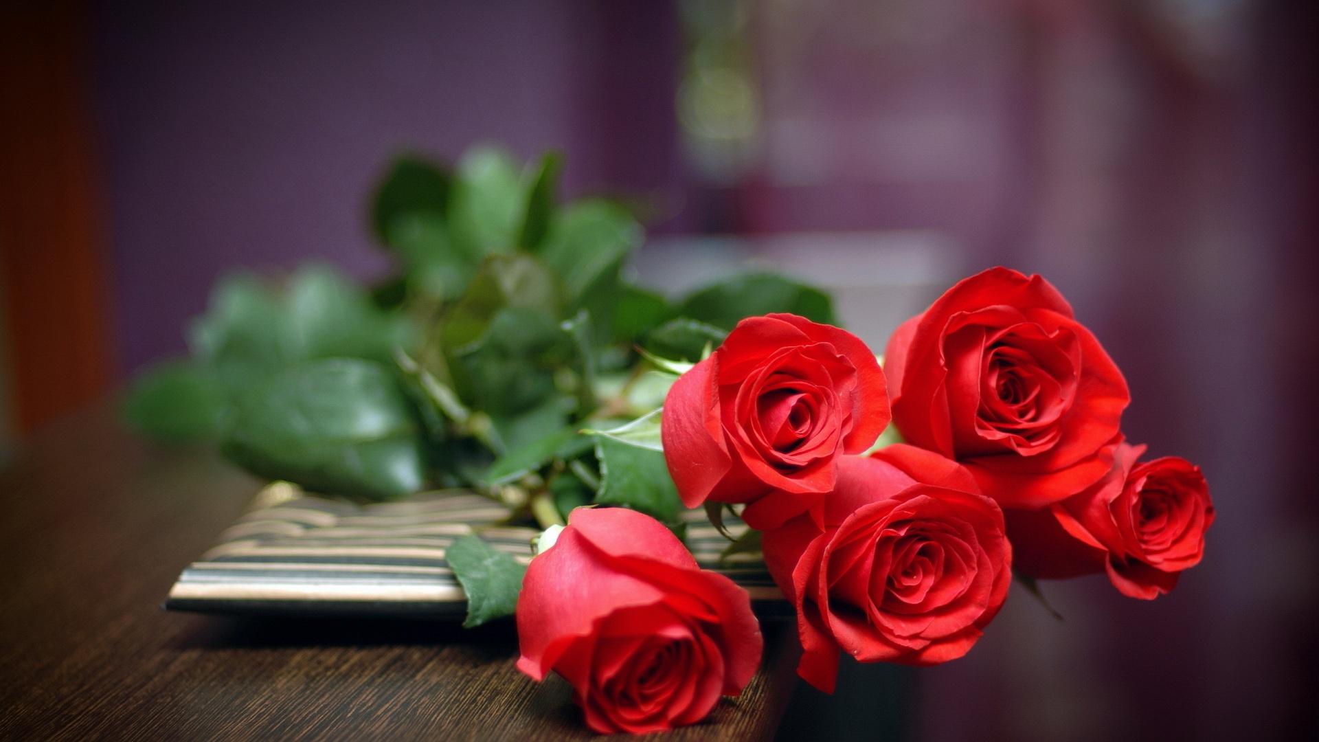 Red Rose Love
