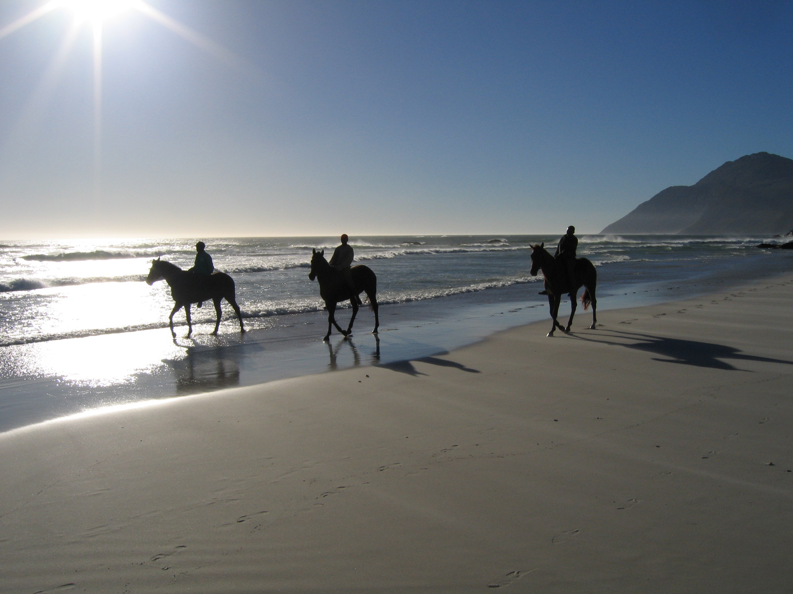 Horse Riding Noordhoek Beach Cape Town South Africa