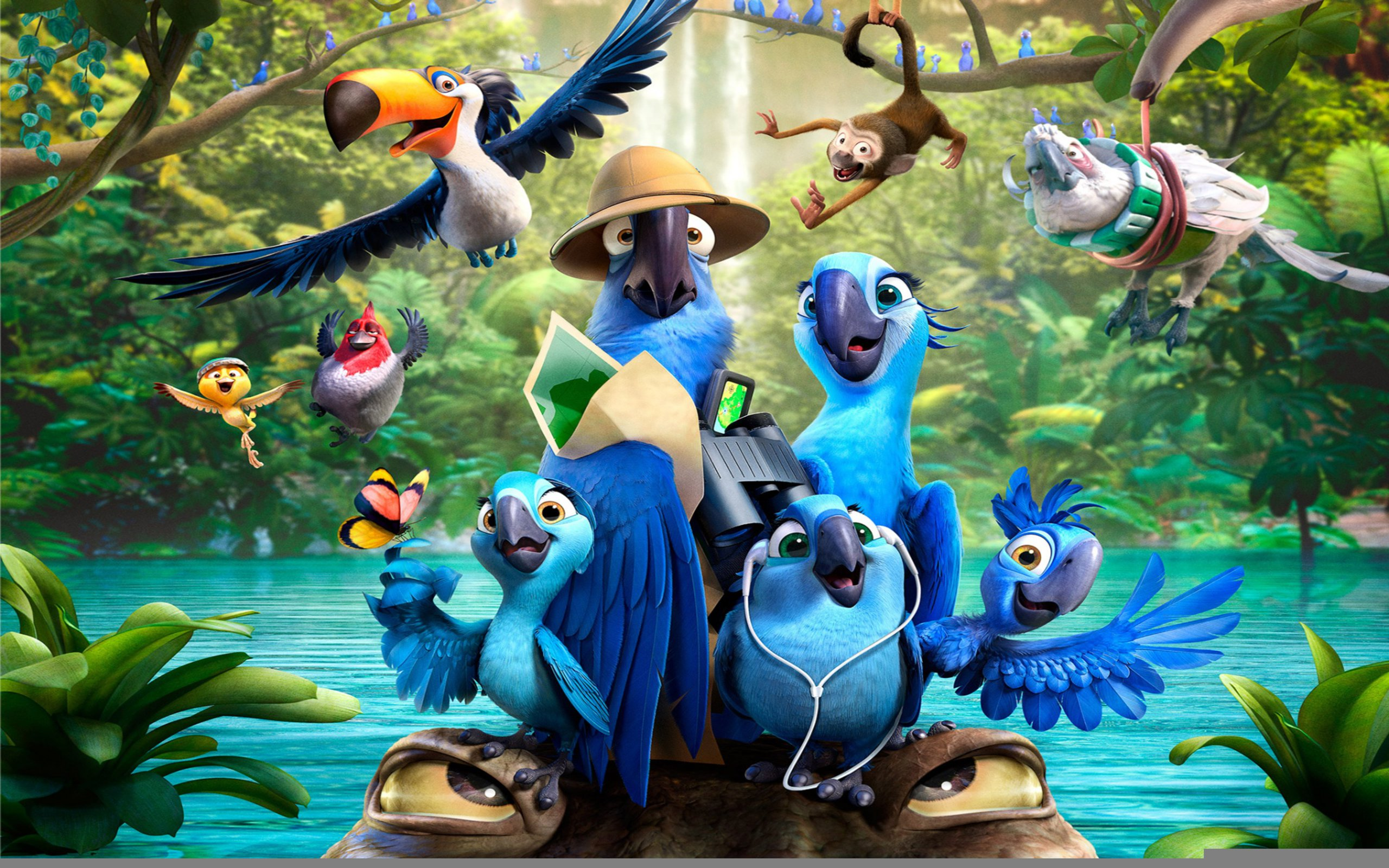 Free Full Cartoon Movies rio 2 cartoon movie wallpaper | 2560x1600 | #9575