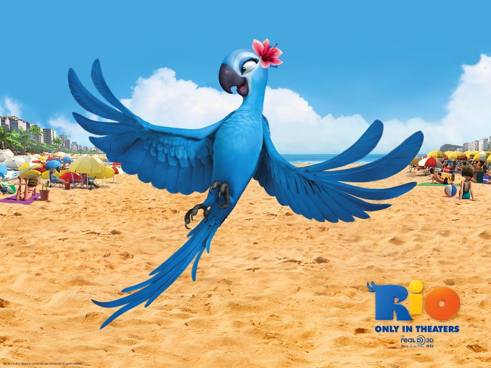 HD Wallpaper   Background ID:338952. 1600x1200 Movie Rio