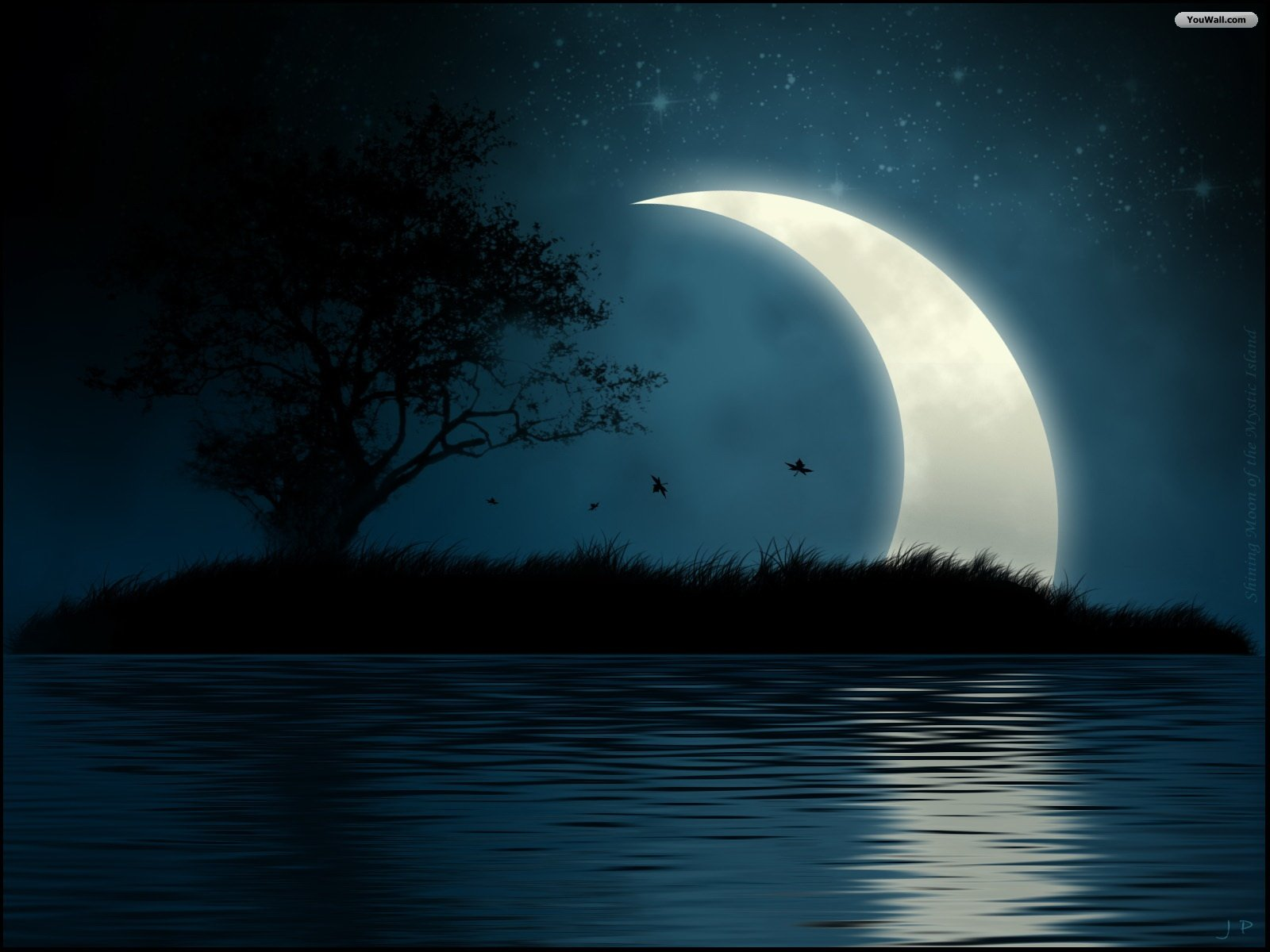 Rising Moon Wallpaper HD
