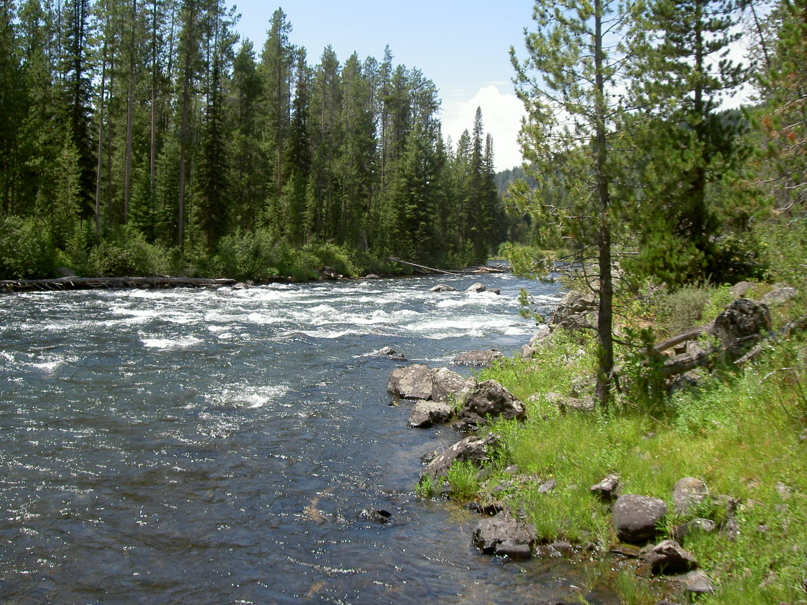 Fly Fishing Idaho, Lesser Known River The Falls River | Fly Fishing Frenzy | blog | stories | reports