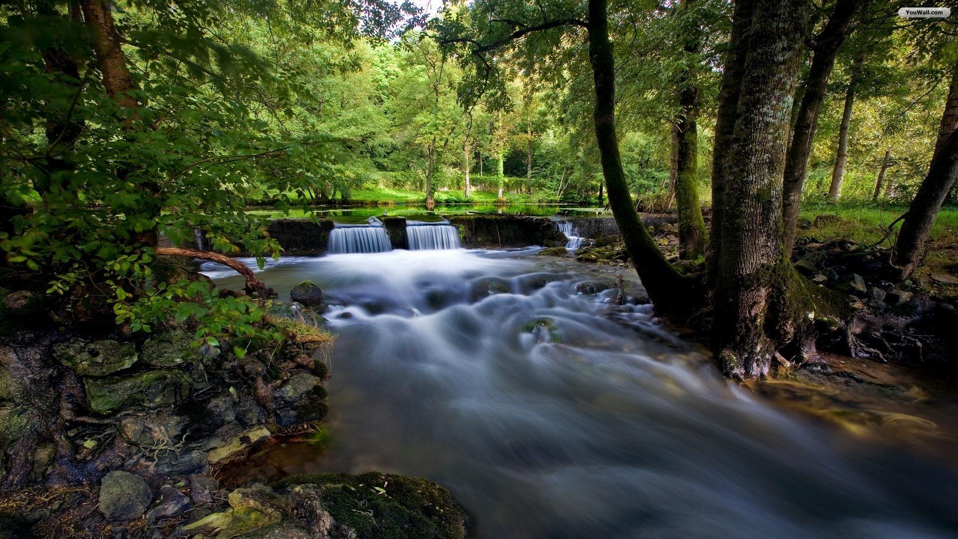Beautiful River Wallpaper 10011
