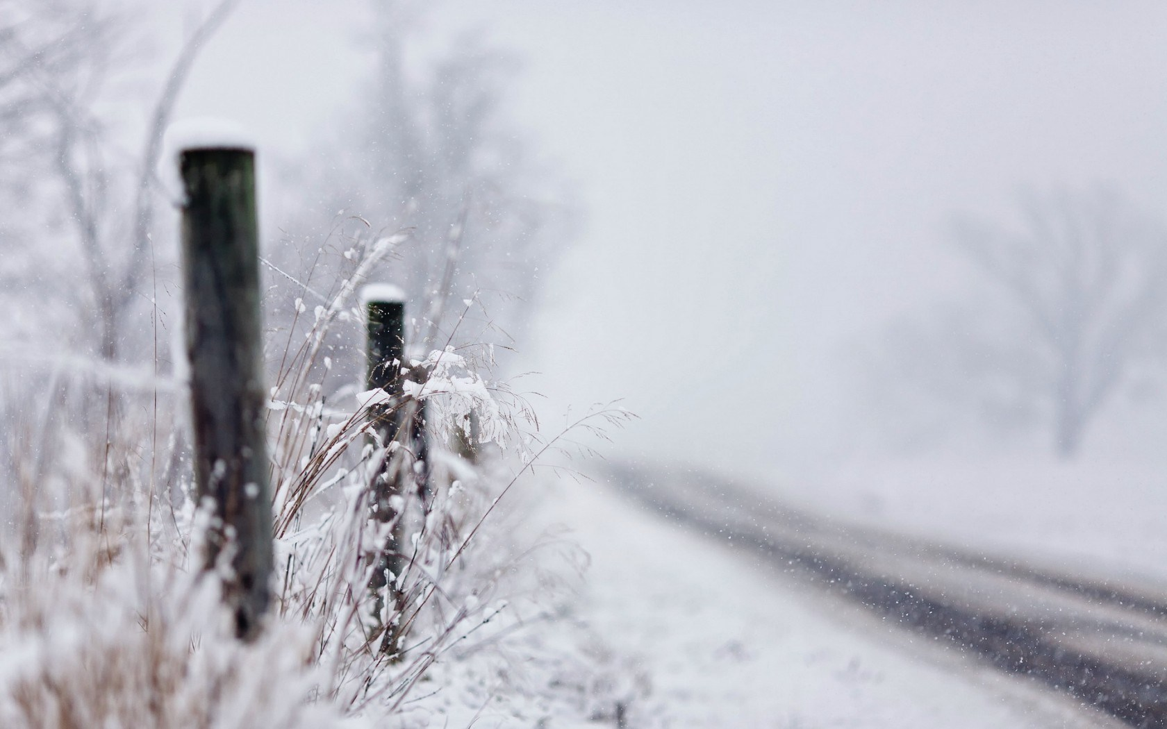 Road Fence Snow Close-Up Nature