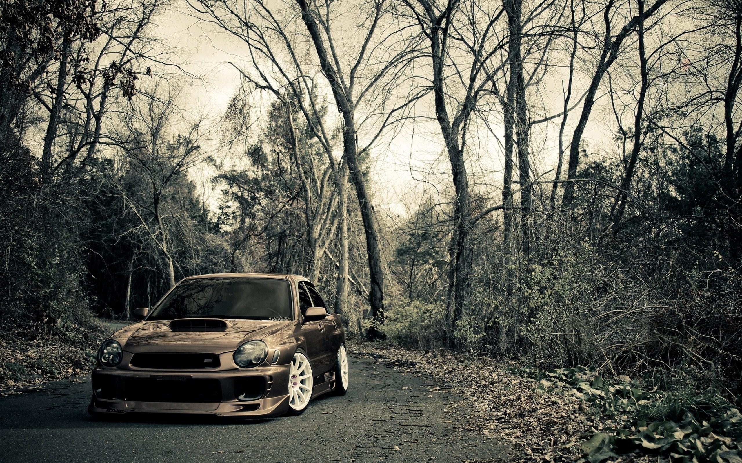 Road Forest Subaru Impreza