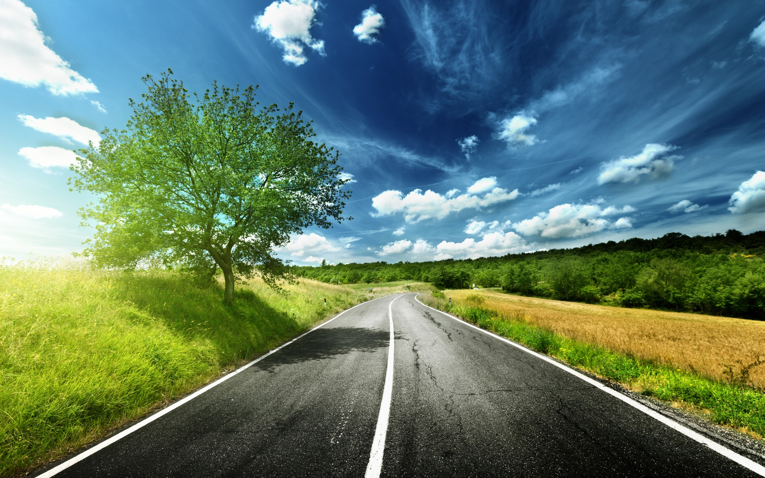 HD Road nature