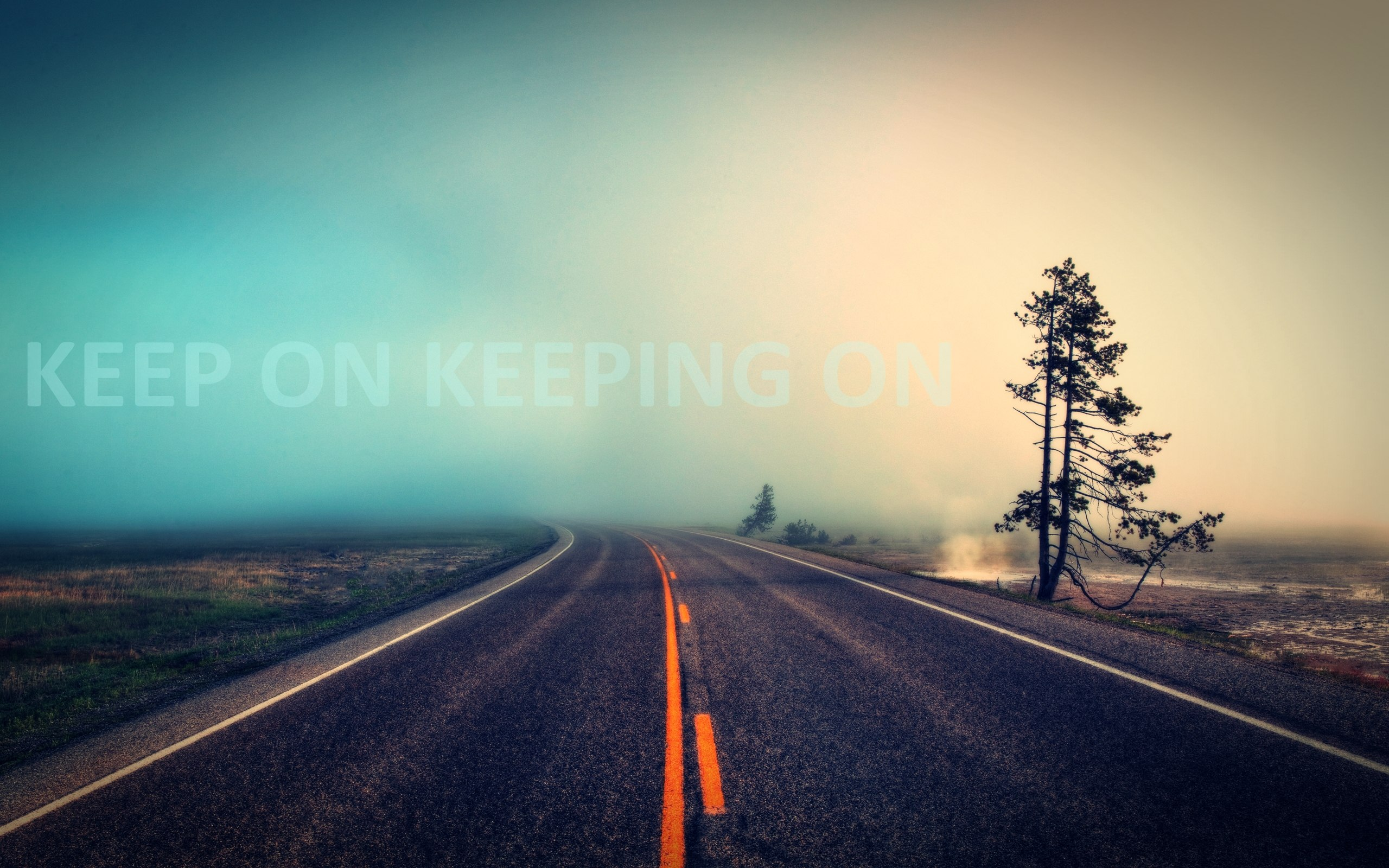 Empty road wallpaper 2560x1600 HQ WALLPAPER - (#26581)