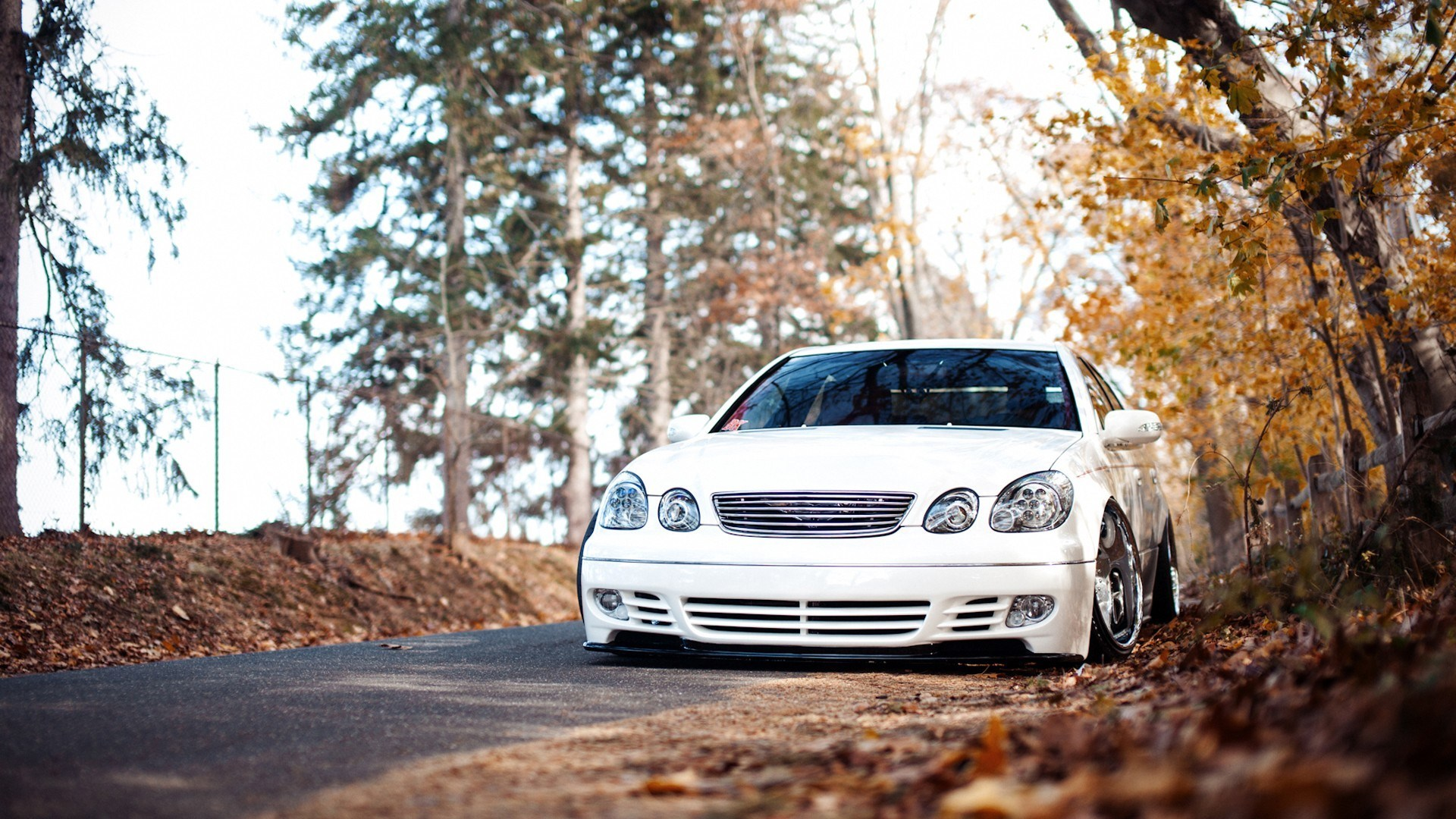 Road White Lexus GS Photo
