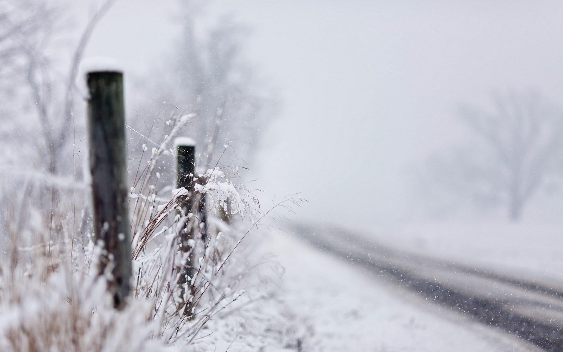 Road Winter Snowfall Nature