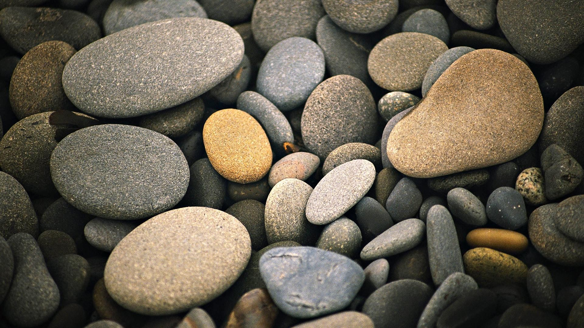 Nature Rocks Wallpaper 1920×1080 Nature