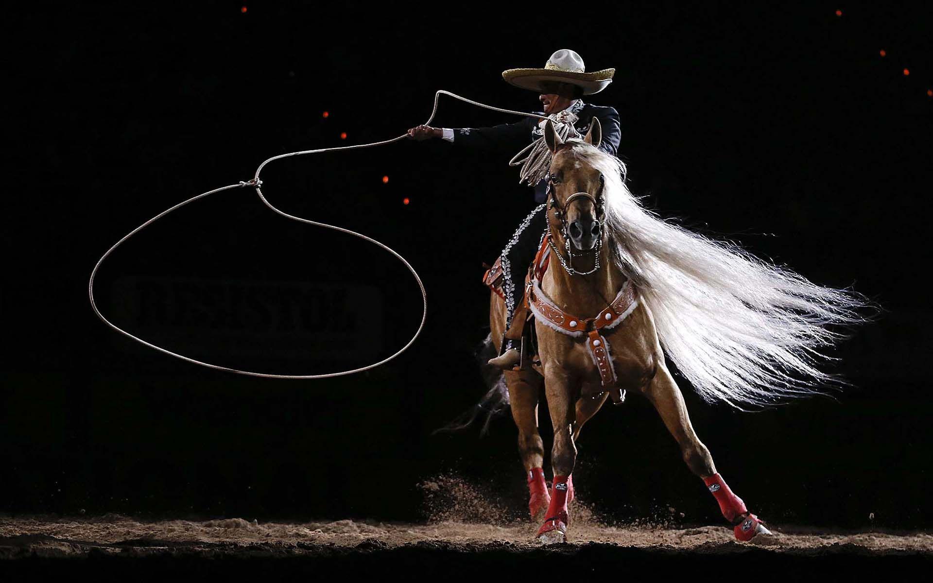Rodeo Wallpaper