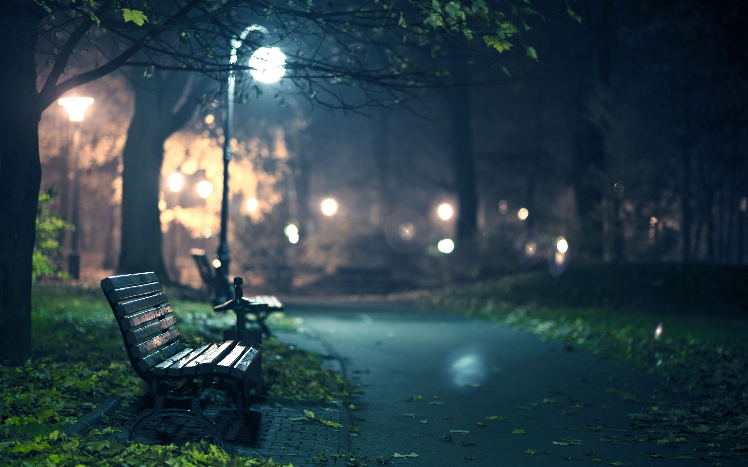 Romantic park bench evening