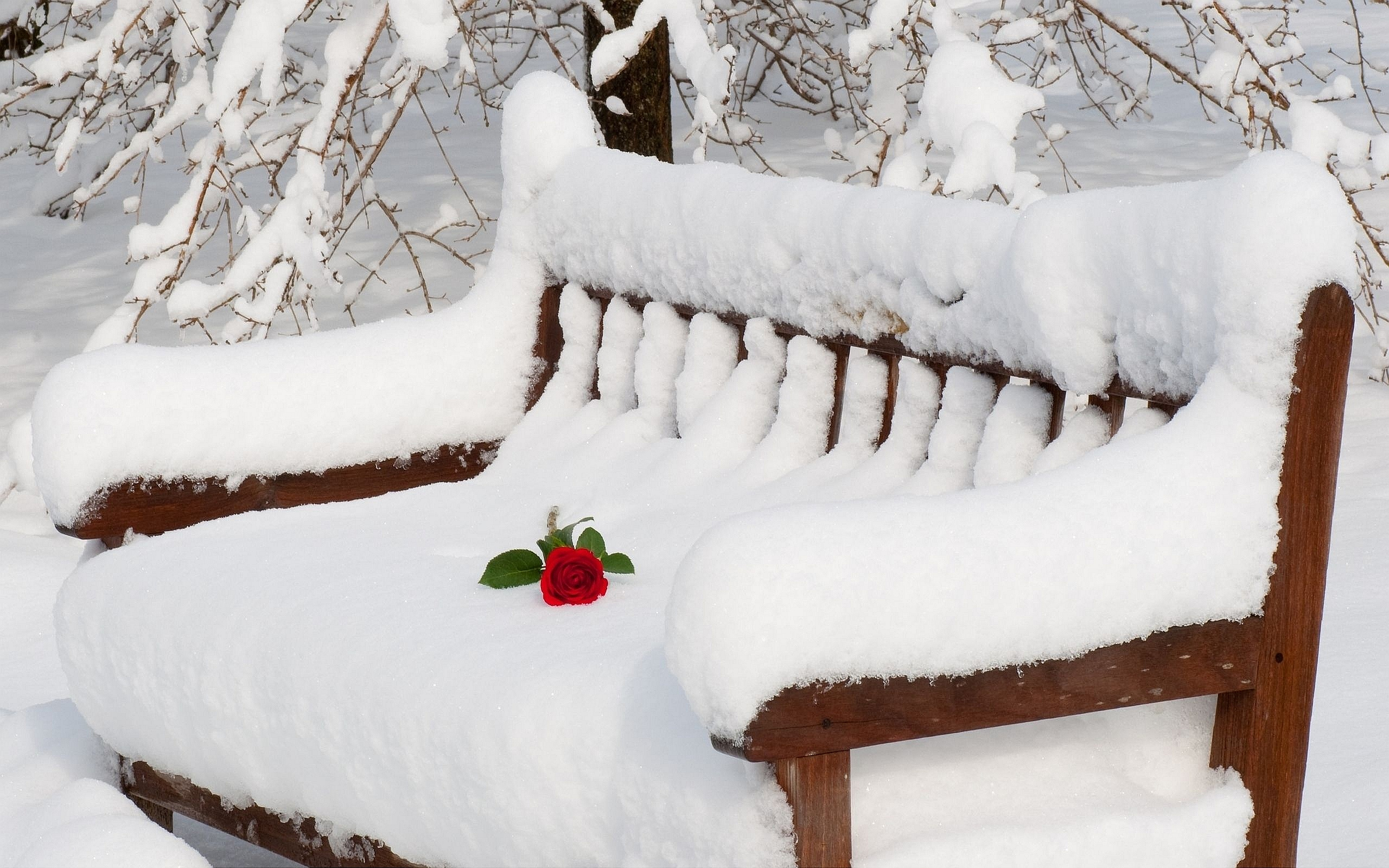 Romantic s wallpaper 1024x768 54393 - Rose in snow wallpaper ...