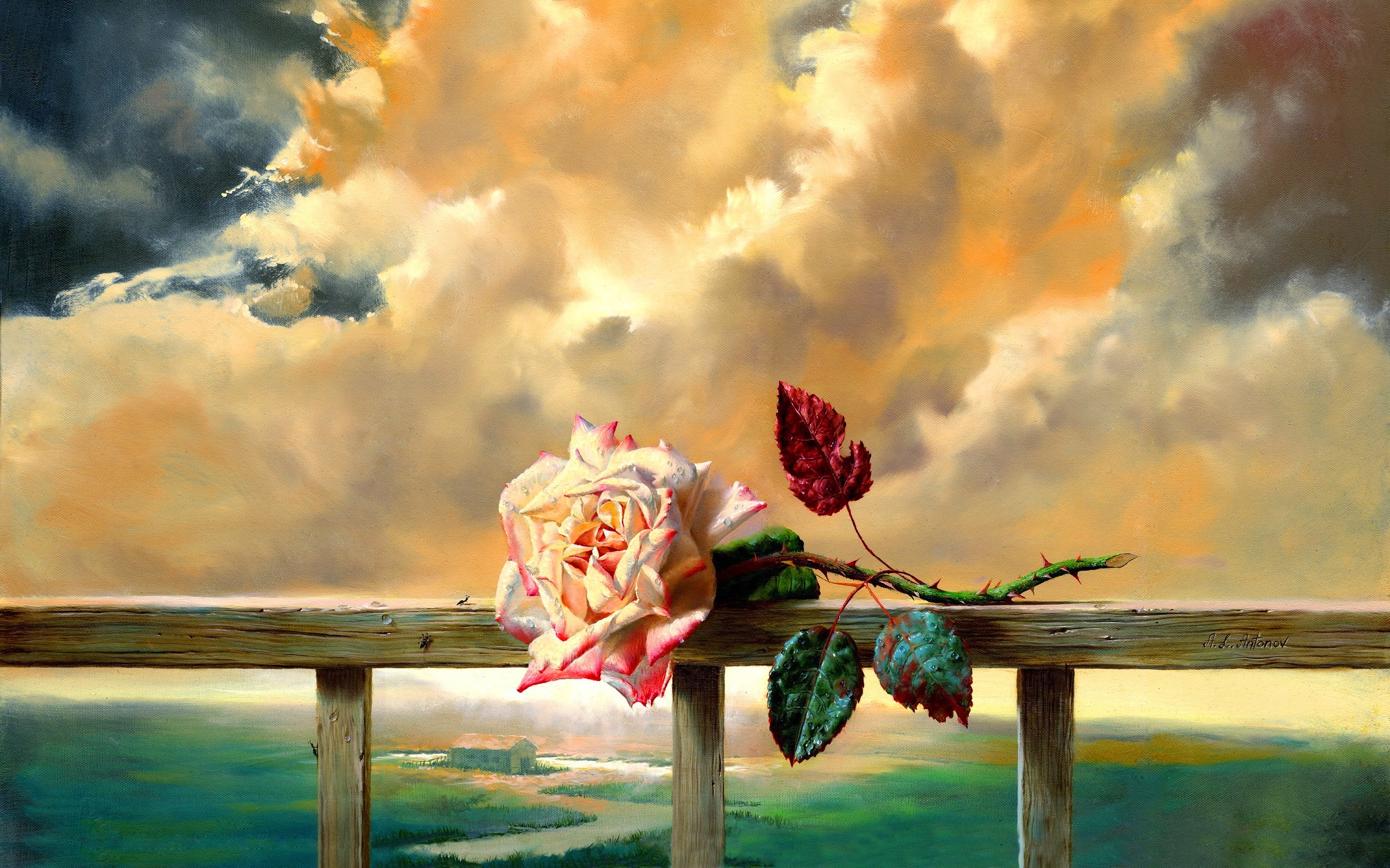 Rose on fence paint