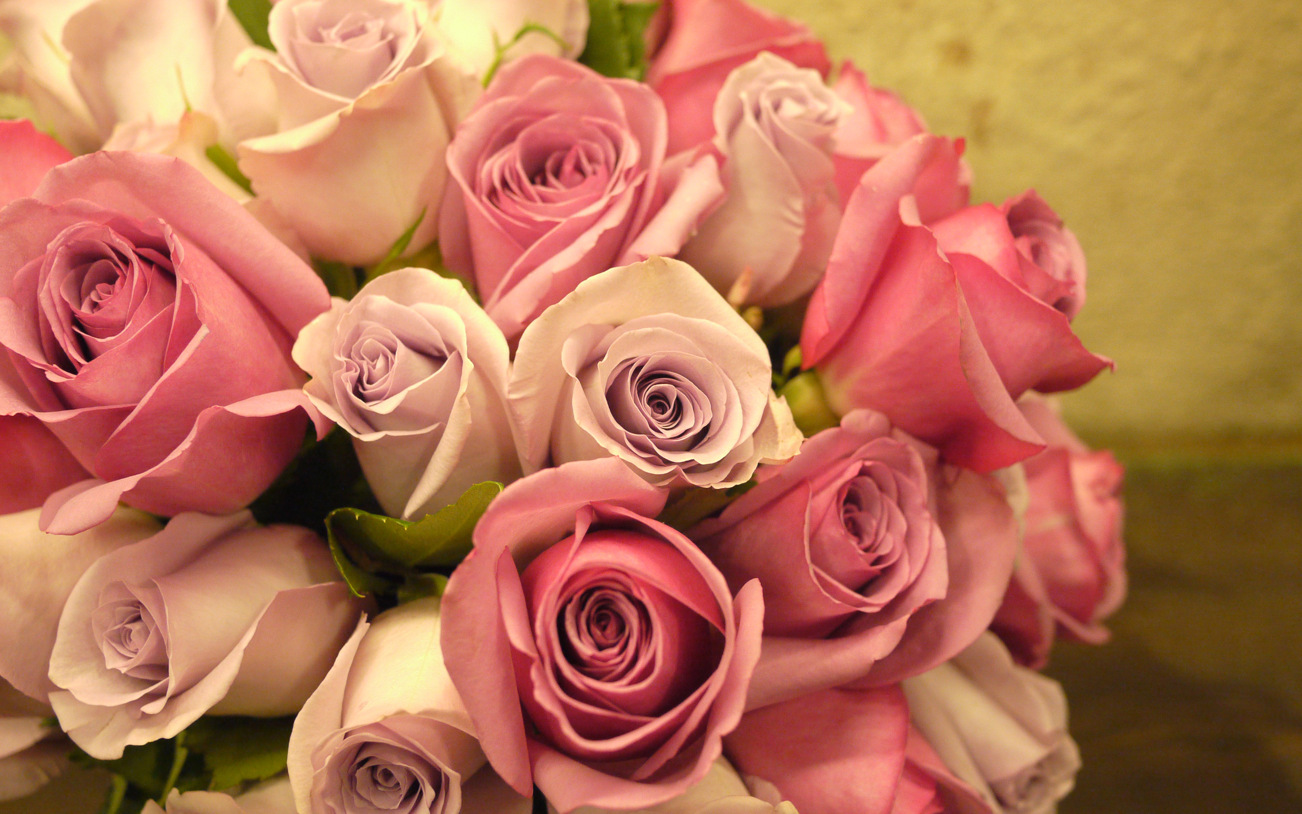 Roses scented