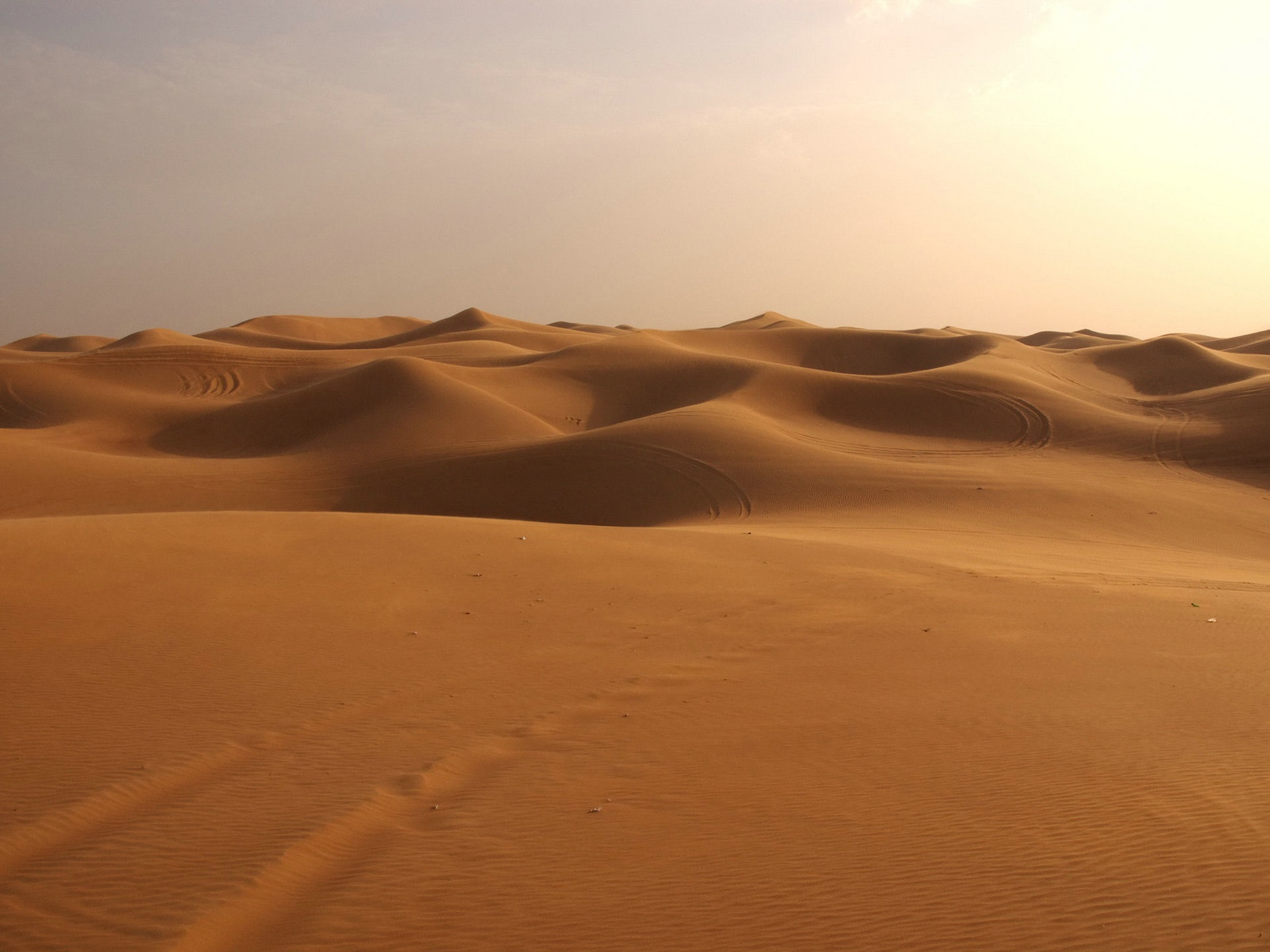 Sahara Landscape Wallpaper